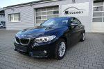 BMW 220 220d Automatik Coupe Driving Assistant