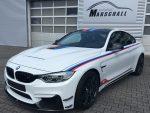 Limitierte Auflage – Weltweit 200 Stück – BMW M4 GTS DTM Champion Edition
